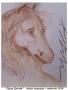 Figura Equestre